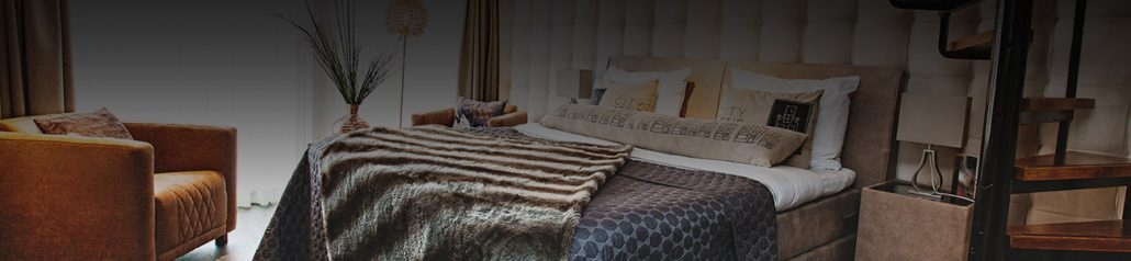 Bed and breakfast City Attic Haarlem